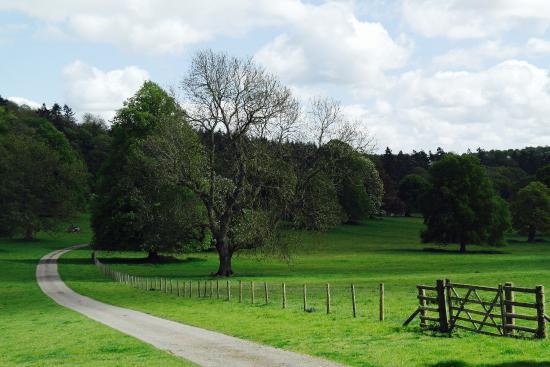 Hereford, UK: Great landscaping at Berrington Hall Gardens