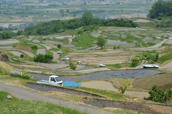 Obasute no Tanada: 田植え時期の棚田