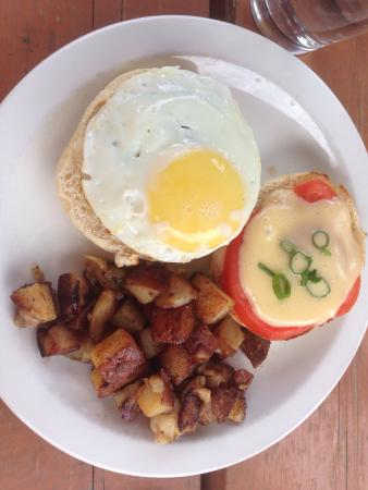 Prairie Harvest Cafe: Delicious breakfast burger with a poached egg and hollandaise sauce.