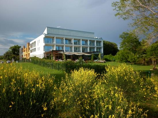 Villa Rosetta Hotel: L'hotel Villa Rosetta visto dalla spiaggia