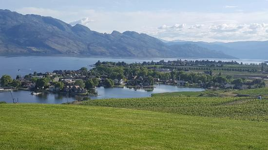 West Kelowna, แคนาดา: View from the winery