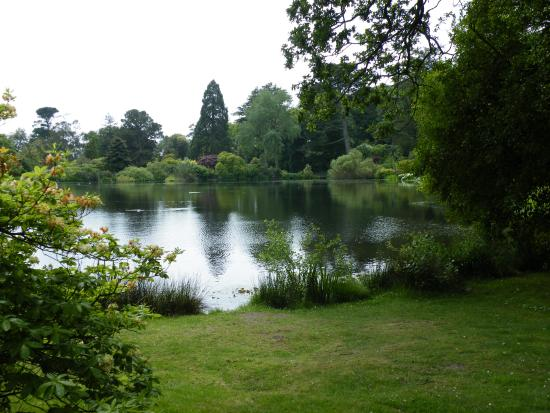 Newtownards, UK: A peaceful lake