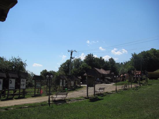 Chernivtsi Oblast, ยูเครน: Куча стендов с интересной информацией.