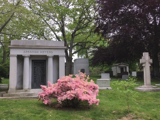 ‪Woodlawn Cemetery‬