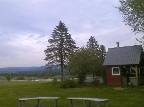 New Haven, VT: Eastern view. Fire pit with benches, completely inviting.