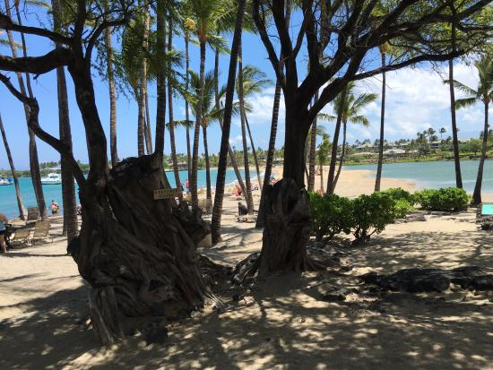 Waikoloa, HI: Entrance onto the beach (restrooms & showers behind me in this pic)