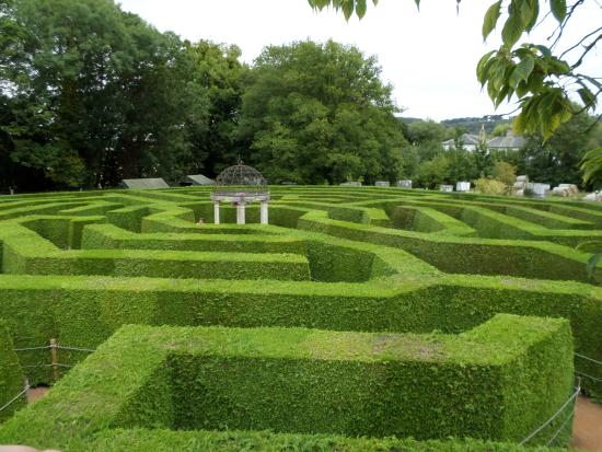 Ross-on-Wye, UK: The Amazing Hedge Maze
