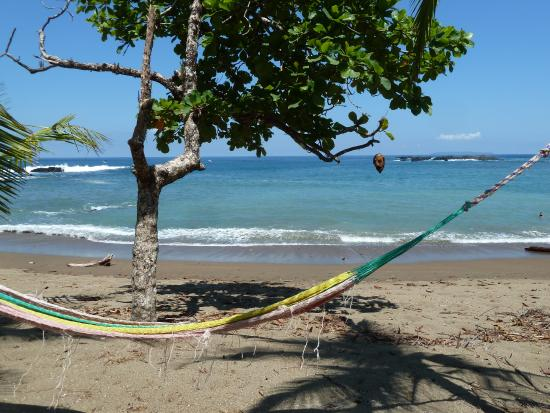 Carate, Costa Rica: Loved this beach!