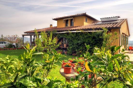 Montespertoli, Italy: Azienda agricola Ammirabile