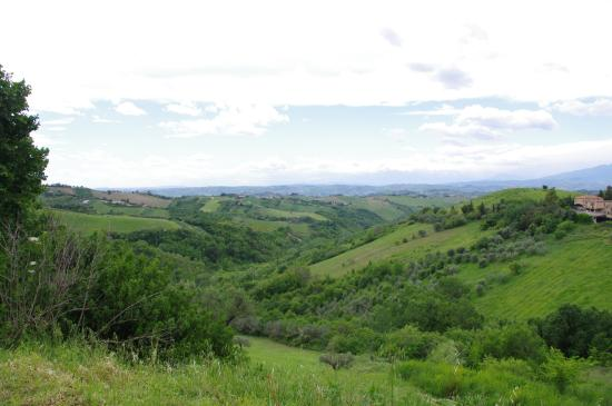 Foto de Agriturismo Villa Bussola