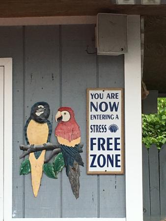Blue Ridge Seafood & Crab Restaurant: photo0.jpg