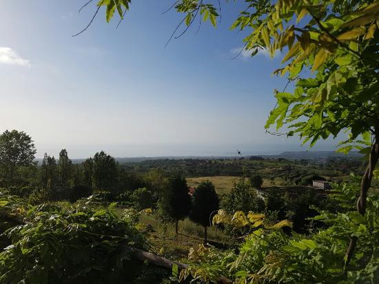 Villa Rosa  Etna Bed & Breakfast: 20160514_074137_large.jpg