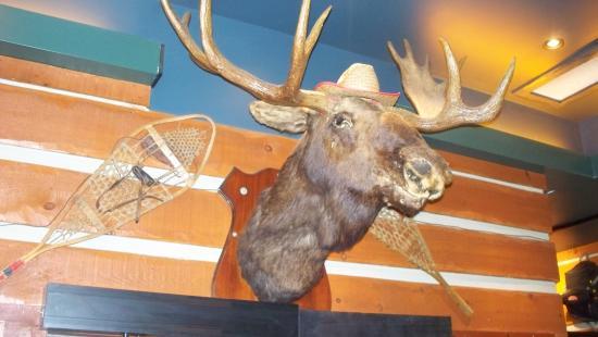 Moose Winooskis: The moose-theme prevails at Moose Winooski's in Barrie, Ontario.
