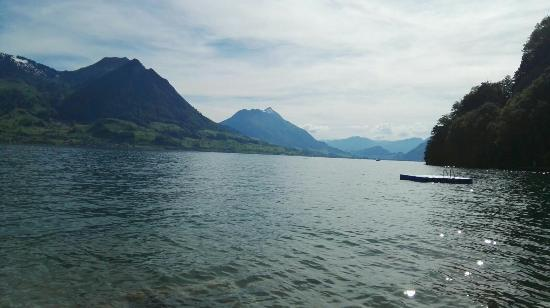 Gersau, İsviçre: IMG-20160521-WA0006_large.jpg