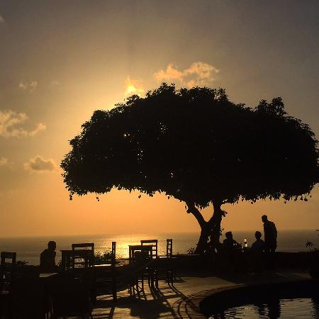 Amazing Sunset From The Pool Area Of The Mango Tree