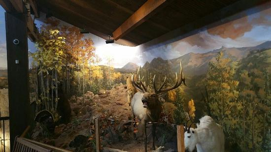 Cripple Creek Heritage and Information Center: Beautiful views and close up information