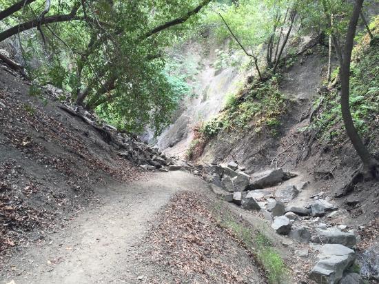 Nojoqui Falls Park: Hiking trail