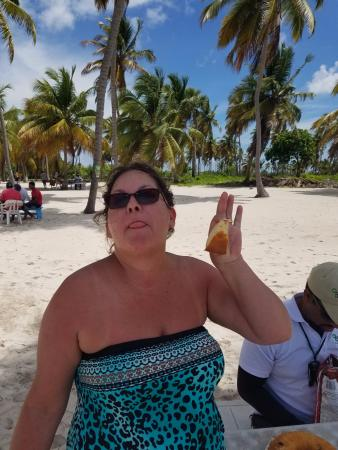 Bayahibe, Dominican Republic: cake and pineapple at Canto de la Playa