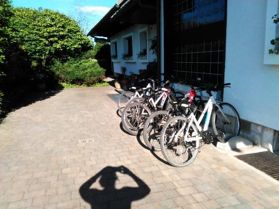 Alp Penzion: bicycles