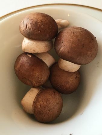 Les Pres d'Eugenie: Perfect mushrooms