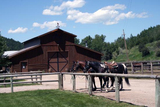 Moose Creek Ranch: Pronti per partire
