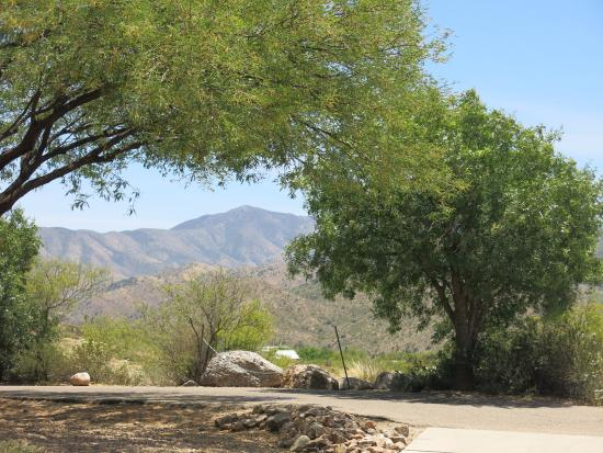 Oracle, AZ: From Visitor's Center