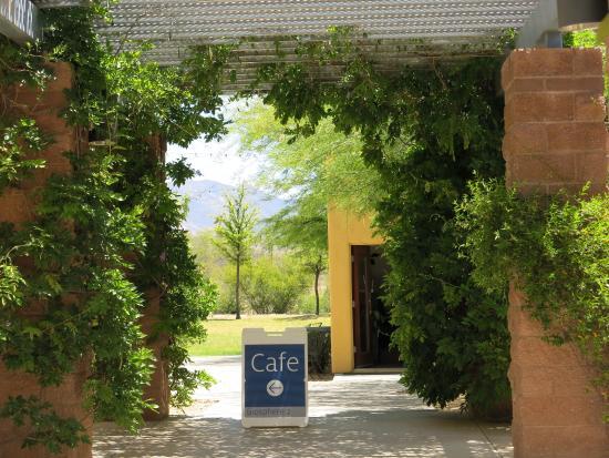 Oracle, AZ: Cafe