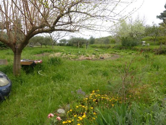 Piedimonte Etneo, Italien: garden