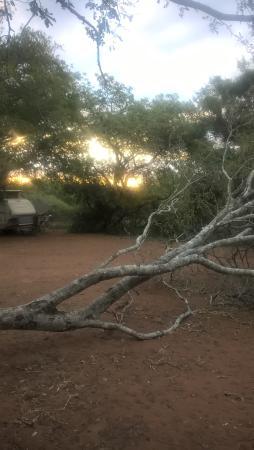 Maputaland Coastal Forest Reserve, África do Sul: Back to nature