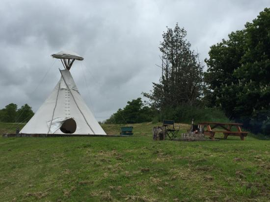 Twycross, UK: Absolutely amazing place! Highly recommend in the rain or sunshine.