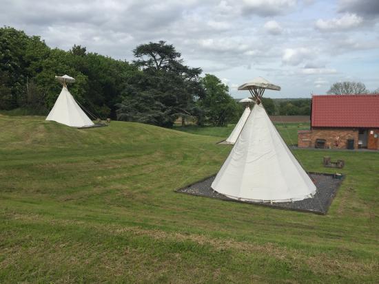Twycross, UK: photo4.jpg