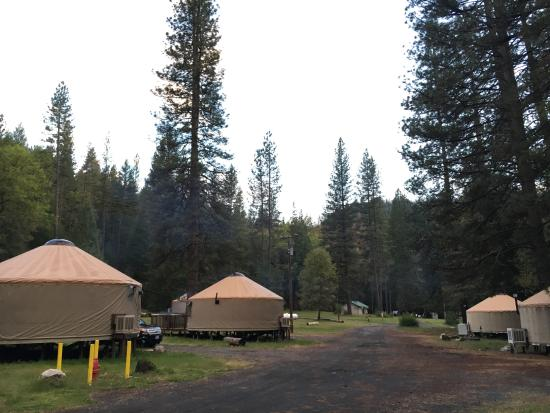 Groveland, CA: The jurts/lodges