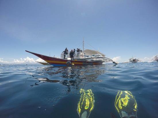阿罗娜海盗潜水中心