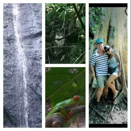 Ticuantepe, Nikaragua: mix of an owl, falls, a frog and a couple by a local tree