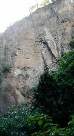 Ticuantepe, Nicaragua: nesting rockface for green birds, chocoyos