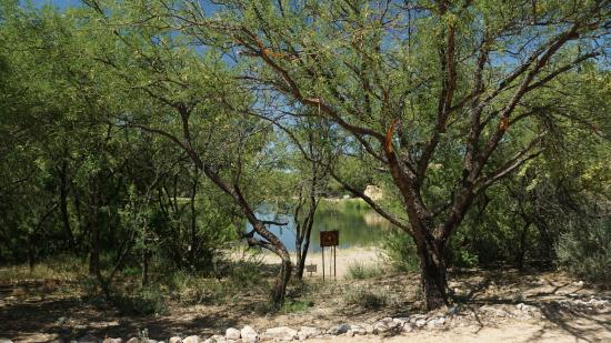 Saint David, AZ: Pond in the Bird Sanctuary