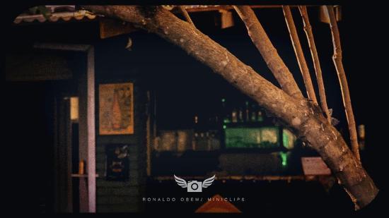 Green House Hostel : bar