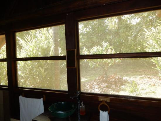 La Anita Rainforest Ranch Picture