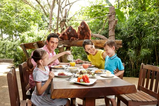 Singapore, Singapore: Enjoy our award-winning Jungle Breakfast with Wildlife,a buffet spread in the company of orangut