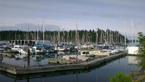 Nanaimo, Canadá: IMAG6762_large.jpg