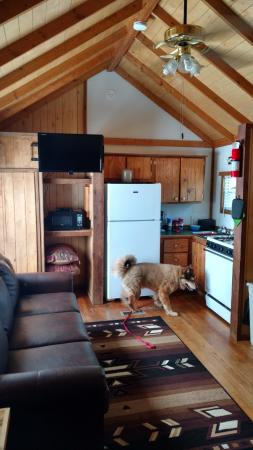 Chama River Bend Lodge: Doggie exploring the room!