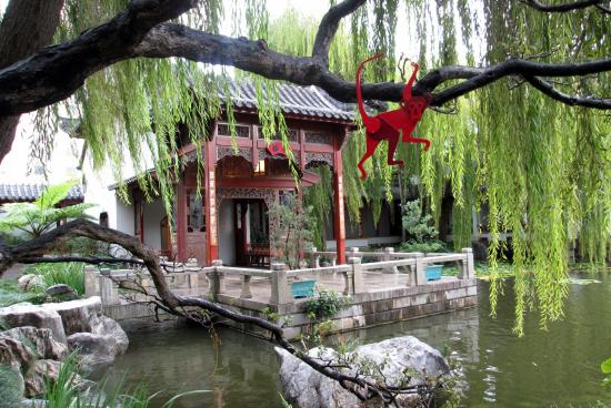 Weeping willow tree with red monkey - Picture of Chinese Garden of ...