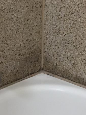 Hawthorn Suites by Wyndham Irving DFW South: Mold in the shower is just unacceptable.