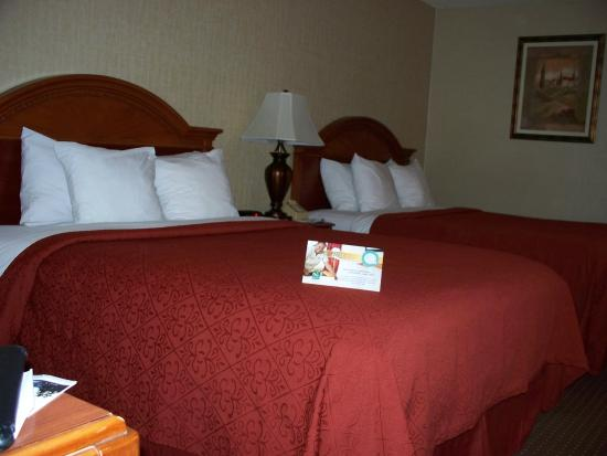 Quality Inn & Suites Conference Center: Two Queen Beds Room