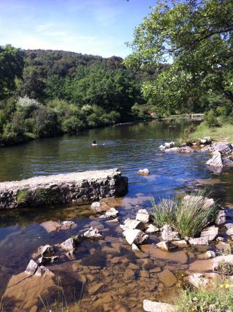 Sierra de Grazalema Natural Park, España: Chapuzon en el rio Campobuches, un precioso paseo desde Tambor del LLano (15 minutos)