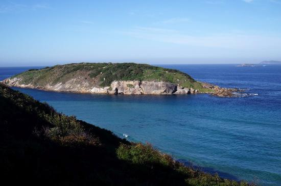 Muttonbird Beach and Shelter Island