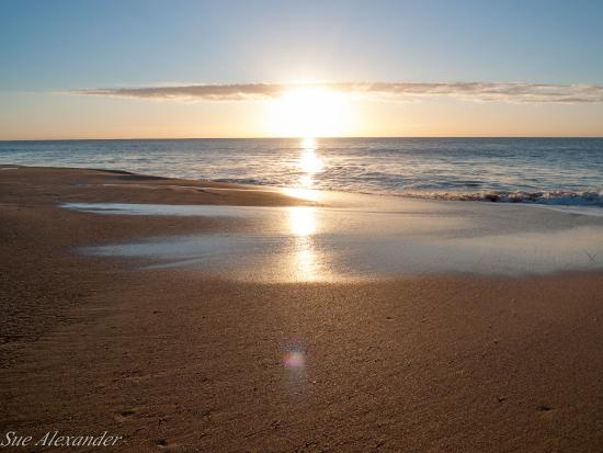 Narrabeen Photo