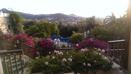 Sandima 37 Hotel Bodrum Photo