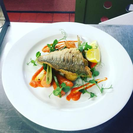 Erpingham Arms Freehouse: Fish of the day
