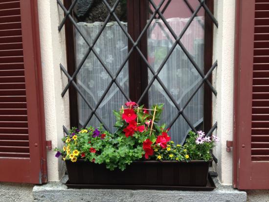 Gordevio, Suiza: Fiori entrata
